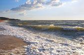 Sea surf foam — Stock Photo