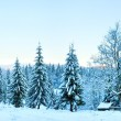 Winter sunset mountain landscape — Stock Photo #8300662