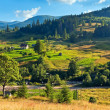 Summer mountain village landscape — Stock Photo #8300884