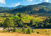 Summer mountain village landscape — Stock Photo