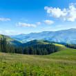 Summer mountain plateau landscape — Stock Photo #9137385