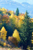 Autumn mountain Nimchich pass — Stock Photo