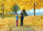 Familie im herbst ahorn-park — Stockfoto