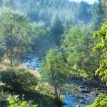 Morning autumn mountain river. — Stock Photo #9573599