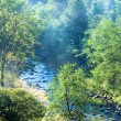 Stock Photo: Morning autumn mountain river.