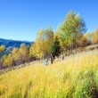 Family walk on autumn  mountain Nimchich pass — Stock Photo
