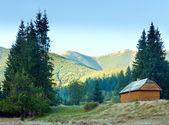 Wooden house on mountainside — Stock Photo