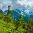 Alps summer view - Stock Photo