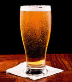 Light beer — Foto de Stock