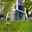Mowing the lawn — Stock Photo