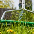 Mowing the lawn in spring — Stock Photo