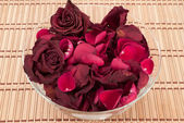 Dead roses in a bowl — Stock Photo