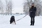 ходьба собаки: девушки — Стоковое фото