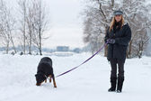 Female walking a dog — Stock Photo