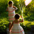 Sister explore & walk on log over stream — Stockfoto #9571315