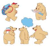 Polar bears — Stock Vector