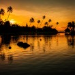 Sunset in a tropical paradise with palm trees - Stock Photo