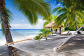 Empty hammock between palm trees on a beach — Stok fotoğraf