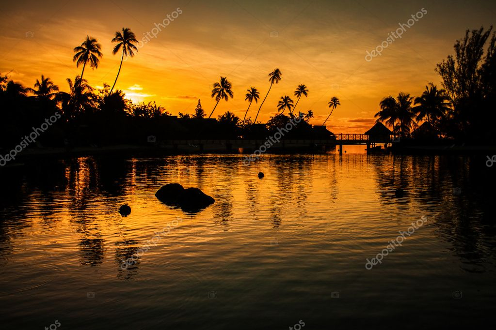 Sunset in a tropical paradise with palm trees and ocean — Stock Photo #10350126