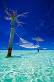 Empty over-water hammock in the middle of lagoon — Stock Photo