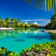 Tropical resort with a green lagoon and palm trees - Stock Photo