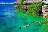 Pareja joven snorkeling en agua limpia sobre arrecife — Foto de Stock