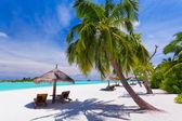 Tropikal bir plajda palmiye ağaçlarının altında güverte sandalyeleri — Stok fotoğraf