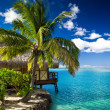 Tropical bungalow and palm tree next to amazing lagoon - Stock Photo