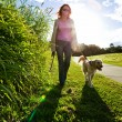 Young woman and golden retriever walking - Stock Photo