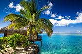 Muhteşem göl yanındaki tropikal bungalov ve palmiye ağacı — Stok fotoğraf