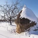 Winter haystack in Carphatian mountains, Romanian — Stock Photo