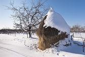 Pagliaio inverno nelle montagne di carphatian, rumeno — Foto Stock