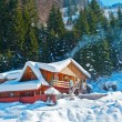 Mountain chalet covered snow in winter — Stock Photo #9218480