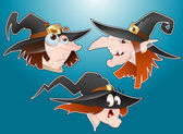Halloween Witches Faces — Stock Vector