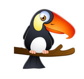 Pták tukan — Stock vektor