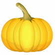 Fresh Pumpkin Vector — Stock Vector