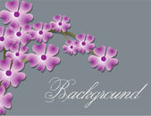 Pink Flowers Background — Stockvector