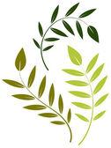 Green Leaf Vector Elements — Stock Vector