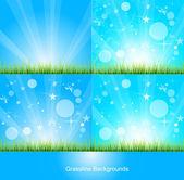 Green Grass Background — Stock Vector