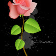 Vector Rose Plant - Imagen vectorial