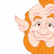 Royalty-Free Stock Vector Image: Old Leprechaun Closeup