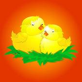 Cute Baby Chicken — Stock Vector