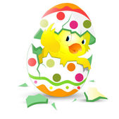 Cute Easter Chicken in Egg Shell — Stock Vector