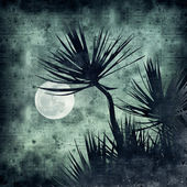 Textured old paper background with tropical night collage — Stock Photo