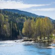 Norway; spring river — Stock Photo