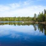 Northern lake — Stock Photo