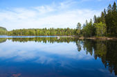 Northern lake — Foto Stock