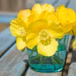 Welsh poppy (meconopsis cambrica) in shallow blue glass;on old garden table — Stock Photo