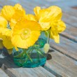 Welsh poppy (meconopsis cambrica) in shallow blue glass;on old garden table — Stock Photo #8956923