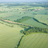 View over the early summer green fields from the air; East Anglia; UK — Foto de Stock